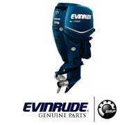 Запчасти для Evinrude
