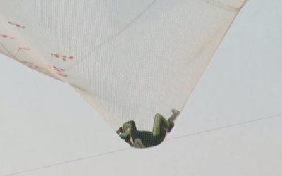 Американец прыгнул без парашюта с высоты более 7 километров